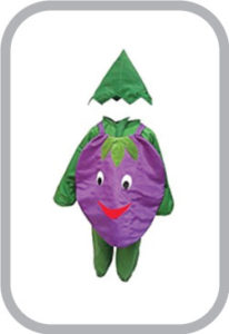 Smily Brinjal fancy dress for kids,Vegetables Costume for School Annual function/Theme Party/Com