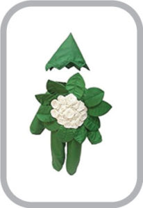 Cauliflower fancy dress for kids,Vegetables Costume for School Annual function/Theme Party/Compe