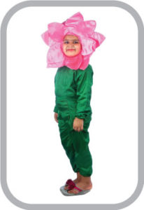 Mazanta flower fancy dress for kids,Nature Costume for Annual function/Theme Party/Stage Shows/C