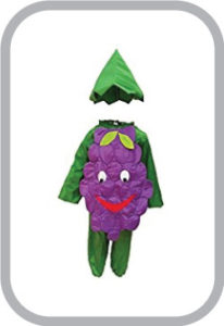 Grapes fancy dress for kids,Fruits Costume for School Annual function/Theme Party/Competition/St