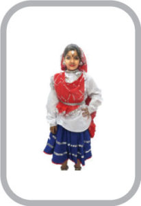 HARYANVI DANCE COSTUME Haryanvi Girl fancy dress for kids,Indian State Traditional Wear Costume for Annual function/The