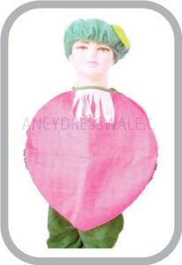 Onion fancy dress for kids,Vegetables Costume for School Annual function/Theme Party/Competition