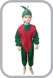 Red Chilly fancy dress for kids,Vegetables Costume for School Annual function/Theme Party/Compet