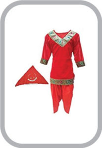 Kashmiri Girl fancy dress for kids,Indian State Traditional Wear Costume for Annual function/The