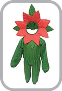 Red flower fancy dress for kids,Nature Costume for Annual function/Theme Party/Stage Shows/Compe