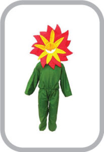 Red flower fancy dress for kids,Nature Costume for Annual function/Theme Party /Stage Shows/Comp