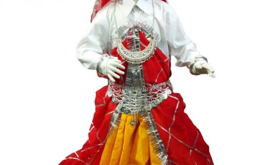 Haryanvi dress for girls, Haryana State costume, Thel Indian costume for girls, Ghaghra Shirt Odhani costume, Strong women costume, Folk costume, Traditional dress, Regional dresses.