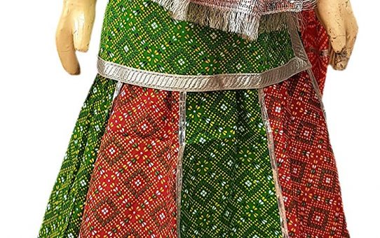 Rajasthani girl regional costume,Rajasthani, colored dress, Folk costume, Indian state regional costume, traditional dress, regional dresses, rajisthan costume, rajasthan costume, rajisthani costume, lehenga choli, ghagra choli, choli, ghaagraa, ghaagra, ghagraa, lahenga,lahangaa